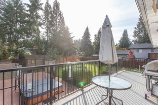 Photo 18: 21616 EXETER AVENUE in Maple Ridge: West Central House for sale : MLS®# R2318244