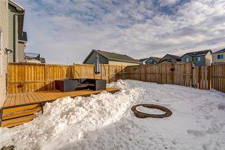 Photo 30: 3081 NEW BRIGHTON GV SE in Calgary: New Brighton House for sale : MLS®# C4229113