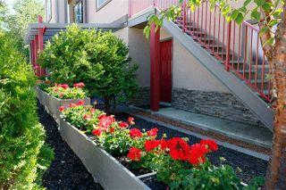Photo 43: 11833 71A Avenue in Edmonton: Zone 15 House for sale : MLS®# E4215840