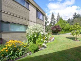 Photo 2: 1259 PLATEAU DRIVE in North Vancouver: Pemberton Heights Condo for sale : MLS®# R2495881