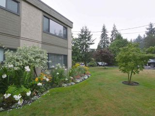 Photo 23: 1259 PLATEAU DRIVE in North Vancouver: Pemberton Heights Condo for sale : MLS®# R2495881