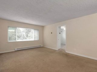 Photo 11: 1259 PLATEAU DRIVE in North Vancouver: Pemberton Heights Condo for sale : MLS®# R2495881