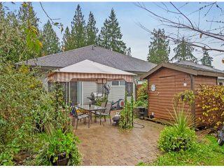 Photo 20: 11377 CREEKSIDE ST in Maple Ridge: Cottonwood MR House for sale : MLS®# V1090739
