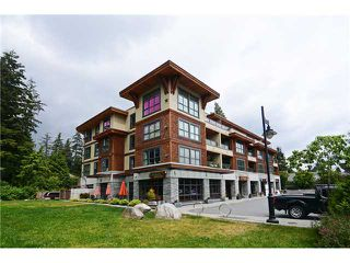 Photo 11: 3732 Mt Seymour Pw in North Vancouver: Indian River Condo for sale : MLS®# V1125539