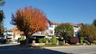 Photo 1: 203 33375 MAYFAIR AVENUE in Abbotsford: Central Abbotsford Condo for sale : MLS®# R2314397