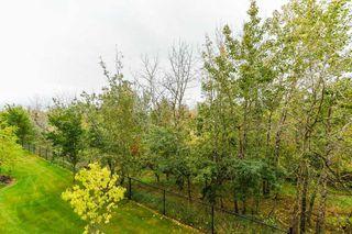 Photo 2: #214 4075 CLOVER BAR RD NW: Sherwood Park Condo for sale : MLS®# E4173672