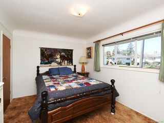 Photo 10: 1443 Stroud Rd in Victoria: Vi Oaklands Single Family Detached for sale : MLS®# 843386