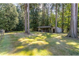 Photo 38: 2186 198 Street in Langley: Brookswood Langley House for sale : MLS®# R2489409