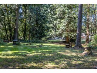 Photo 39: 2186 198 Street in Langley: Brookswood Langley House for sale : MLS®# R2489409