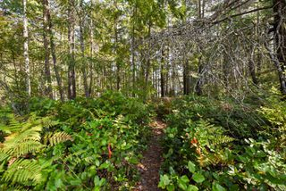 Photo 5: Lot 191 Brent Rd in : CV Comox Peninsula Land for sale (Comox Valley)  : MLS®# 855702