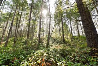 Photo 6: Lot 191 Brent Rd in : CV Comox Peninsula Land for sale (Comox Valley)  : MLS®# 855702