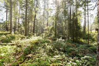 Photo 12: Lot 191 Brent Rd in : CV Comox Peninsula Land for sale (Comox Valley)  : MLS®# 855702