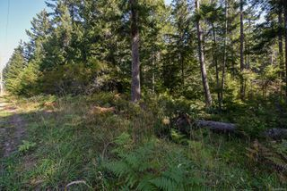 Photo 4: Lot 191 Brent Rd in : CV Comox Peninsula Land for sale (Comox Valley)  : MLS®# 855702