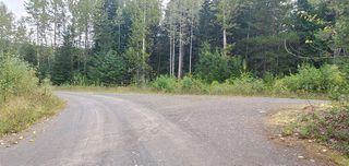 Photo 4: LOT A 37 Highway: Kitwanga Land for sale (Smithers And Area (Zone 54))  : MLS®# R2506362