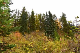 Photo 14: LOT A 37 Highway: Kitwanga Land for sale (Smithers And Area (Zone 54))  : MLS®# R2506362