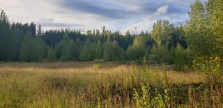 Photo 7: LOT A 37 Highway: Kitwanga Land for sale (Smithers And Area (Zone 54))  : MLS®# R2506362