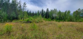 Photo 13: LOT A 37 Highway: Kitwanga Land for sale (Smithers And Area (Zone 54))  : MLS®# R2506362