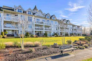 Photo 19: 211 6263 RIVER ROAD in Delta: East Delta Condo for sale (Ladner)  : MLS®# R2033245
