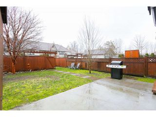 Photo 20: 23671 DEWDNEY TRUNK ROAD in Maple Ridge: East Central House for sale : MLS®# R2036237