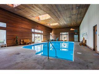 """Photo 37: 35 7001 EDEN Drive in Chilliwack: Sardis West Vedder Rd House for sale in """"EDENBANK"""" (Sardis)  : MLS®# R2470390"""