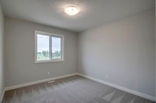 Photo 39: 201 RAVENSTERN Crescent SE: Airdrie Detached for sale : MLS®# A1019467