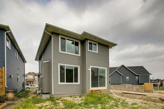 Photo 42: 201 RAVENSTERN Crescent SE: Airdrie Detached for sale : MLS®# A1019467