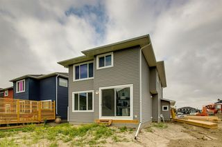 Photo 44: 201 RAVENSTERN Crescent SE: Airdrie Detached for sale : MLS®# A1019467