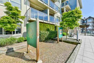 """Photo 26: 301 19936 56 Avenue in Langley: Langley City Condo for sale in """"Bearing Pointe"""" : MLS®# R2487217"""