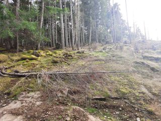 Photo 8: Lot 19 Ling Cod Lane in : Isl Mudge Island Land for sale (Islands)  : MLS®# 857824