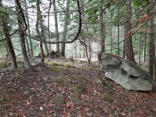 Photo 3: Lot 19 Ling Cod Lane in : Isl Mudge Island Land for sale (Islands)  : MLS®# 857824