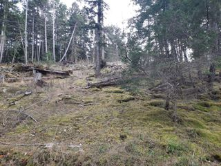 Photo 10: Lot 19 Ling Cod Lane in : Isl Mudge Island Land for sale (Islands)  : MLS®# 857824