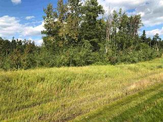 Photo 16: 2504  / 2504 A HWY 633: Rural Lac Ste. Anne County Rural Land/Vacant Lot for sale : MLS®# E4224923