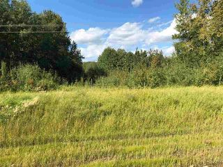 Photo 15: 2504  / 2504 A HWY 633: Rural Lac Ste. Anne County Rural Land/Vacant Lot for sale : MLS®# E4224923