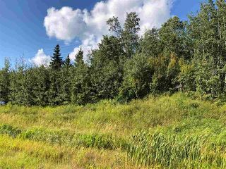 Photo 17: 2504  / 2504 A HWY 633: Rural Lac Ste. Anne County Rural Land/Vacant Lot for sale : MLS®# E4224923