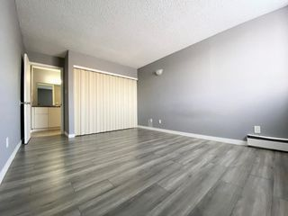 Photo 24: 109 18204 93 Avenue in Edmonton: Zone 20 Condo for sale : MLS®# E4187233