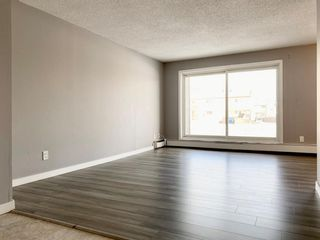 Photo 14: 109 18204 93 Avenue in Edmonton: Zone 20 Condo for sale : MLS®# E4187233
