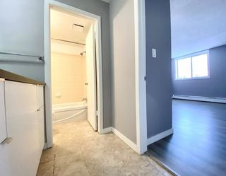Photo 23: 109 18204 93 Avenue in Edmonton: Zone 20 Condo for sale : MLS®# E4187233