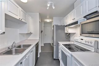 Photo 12: 308 2511 Quadra St in VICTORIA: Vi Hillside Condo Apartment for sale (Victoria)  : MLS®# 839268
