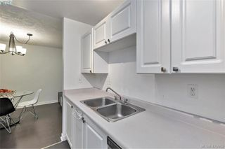 Photo 11: 308 2511 Quadra St in VICTORIA: Vi Hillside Condo Apartment for sale (Victoria)  : MLS®# 839268
