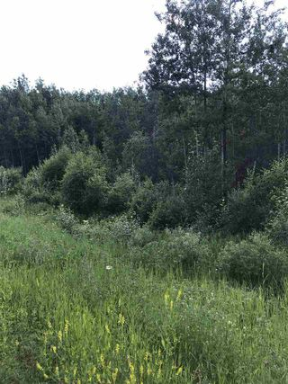 Photo 4: RR60 Two Rd 552: Rural Lac Ste. Anne County Rural Land/Vacant Lot for sale : MLS®# E4205797