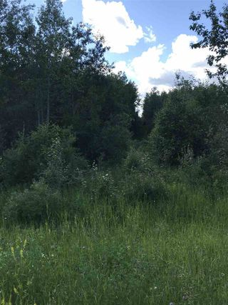 Photo 3: RR60 Two Rd 552: Rural Lac Ste. Anne County Rural Land/Vacant Lot for sale : MLS®# E4205797