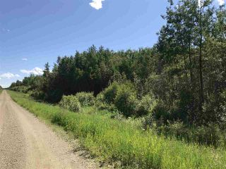 Photo 2: RR60 Two Rd 552: Rural Lac Ste. Anne County Rural Land/Vacant Lot for sale : MLS®# E4205797