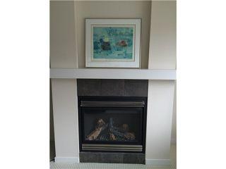 Photo 3: 308 6508 DENBIGH Avenue in Burnaby: Forest Glen BS Condo for sale (Burnaby South)  : MLS®# V1076904