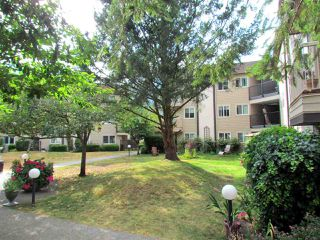 Photo 5: B303 40120 WILLOW CRESCENT in Squamish: Garibaldi Estates Condo for sale : MLS®# R2294966