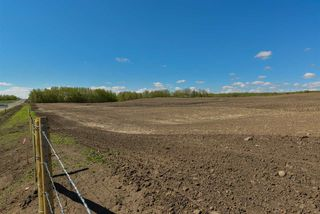 Photo 5: 54128 RGE RD 274: Rural Parkland County Rural Land/Vacant Lot for sale : MLS®# E4181279