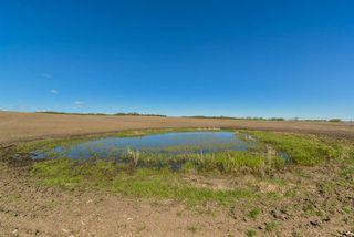 Photo 14: 54128 RGE RD 274: Rural Parkland County Rural Land/Vacant Lot for sale : MLS®# E4181279