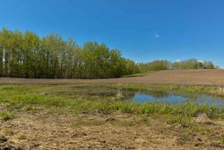 Photo 15: 54128 RGE RD 274: Rural Parkland County Rural Land/Vacant Lot for sale : MLS®# E4181279