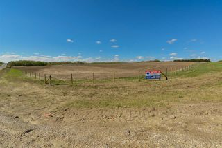 Photo 7: 54128 RGE RD 274: Rural Parkland County Rural Land/Vacant Lot for sale : MLS®# E4181279