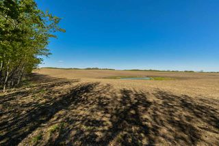 Photo 12: 54128 RGE RD 274: Rural Parkland County Rural Land/Vacant Lot for sale : MLS®# E4181279