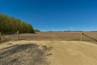Photo 10: 54128 RGE RD 274: Rural Parkland County Rural Land/Vacant Lot for sale : MLS®# E4181279